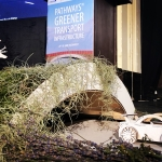 Bucharest conference: Carpathian highways to become more nature friendly