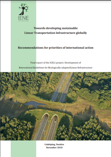 Towards developing sustainable Linear Transportation Infrastructure globally. Recommendations for priorities of international action